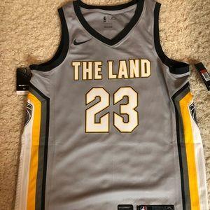 Lebron The Land Swingman Jersey